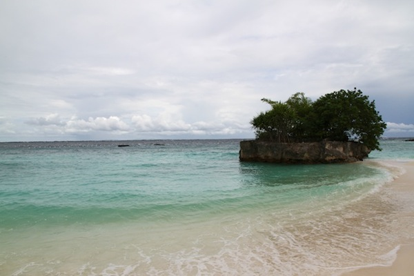 Cebu sea