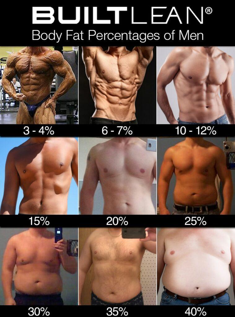男性の体脂肪率別の体の画像